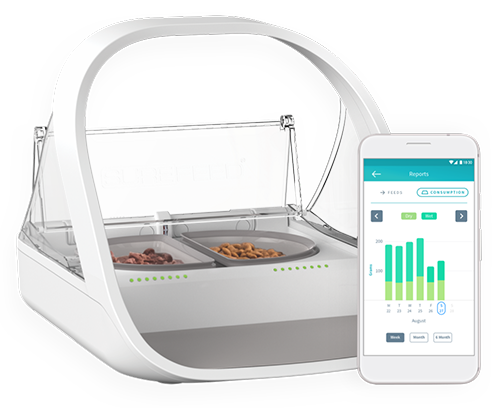 Win a Surefeed Microchip Pet Feeder Connect