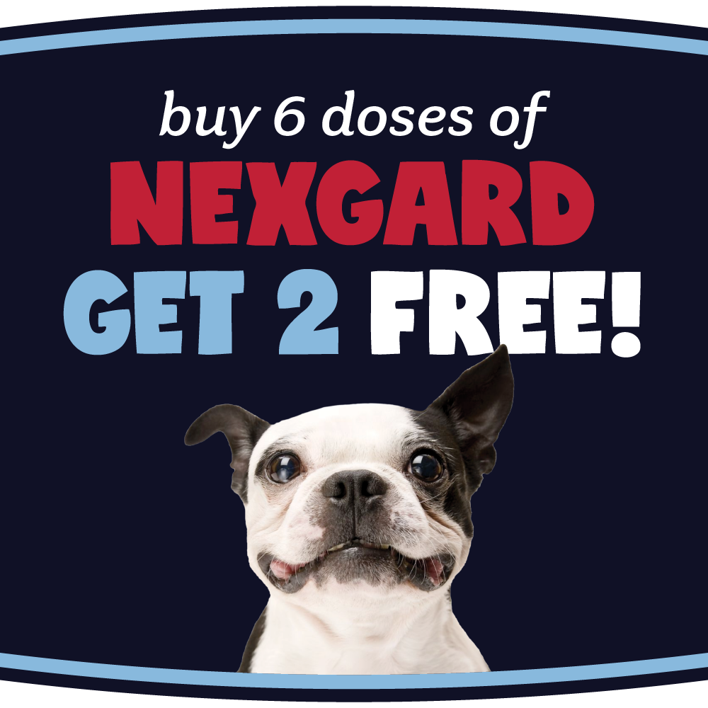 Get Two FREE doses of Nexgard